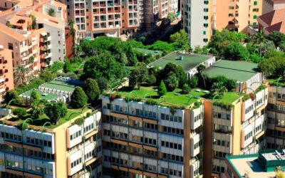 Keeping busy with green infrastructure